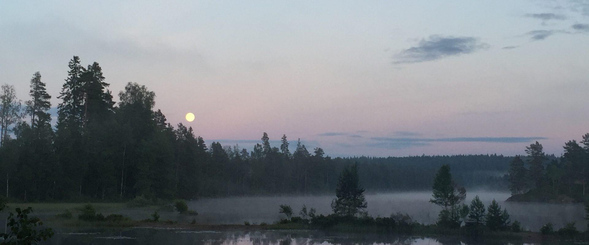 Meerdaagse kanotochten in Zweden
